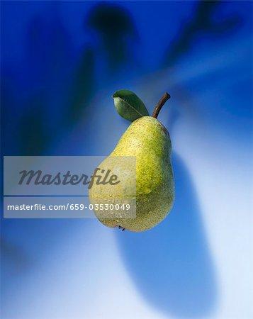 A Williams' Bon Chrétien pear