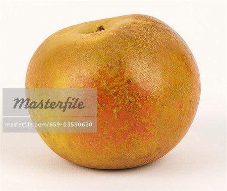 Une pomme Russet