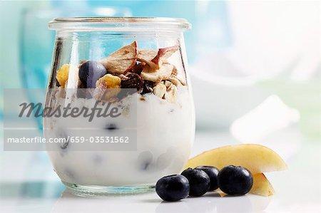Joghurt mit Müsli, Heidelbeeren und getrockneten Früchten