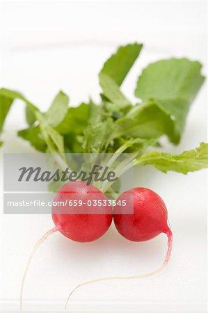 Two radishes