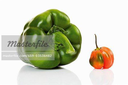Green pepper and habanero chilli