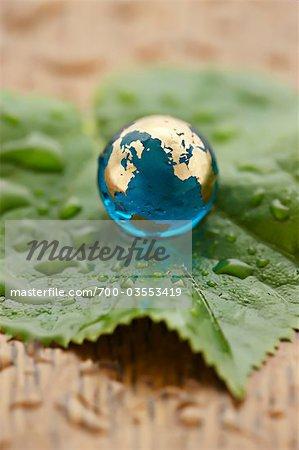 Close-up of Glass Globe on Leaf