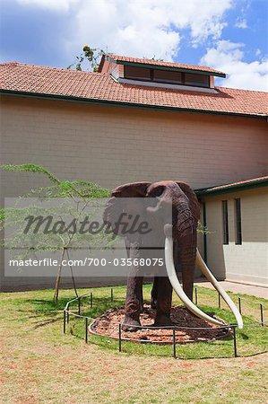Nairobi National Museum, Nairobi, Kenya, Africa