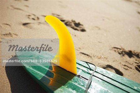 Surf Board, Baja California Sur, Mexico
