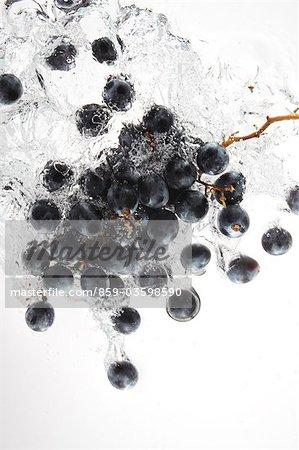 Raisins de Kyoho éclaboussures dans l'eau