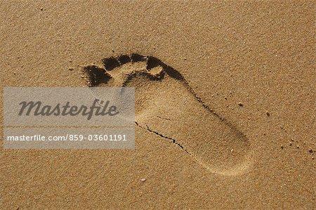 Foot Prints In The Sand,Santander,Spain