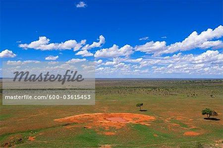 Wasserstelle, Tsavo-Nationalpark, Kenia