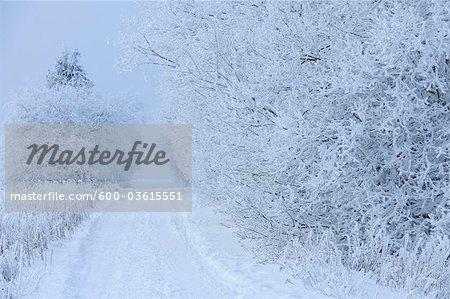 Road in Winter, Heidelstein, Rhon Mountains, Bavaria, Germany