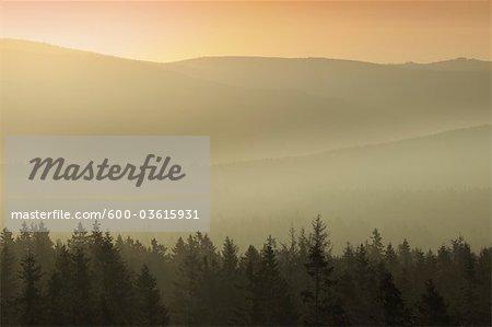 Vue depuis le sommet de Achtermann, le Parc National du Harz, Basse-Saxe, Allemagne