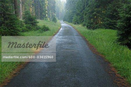 Route de campagne, St Andreasberg, le Parc National du Harz, Basse-Saxe, Allemagne