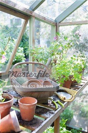 Matériel de jardinage sur établi dans potting shed