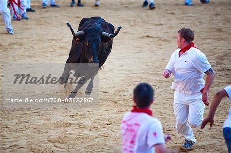 Fiesta de San Fermin, Plaza de Toros de Pamplona, Pampelune, Navarre, Espagne