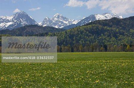 Paysage de montagne près de Füssen, Allgäu, Bavière, Allemagne
