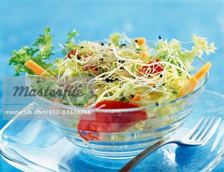 Différents types de salade de choux