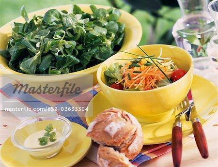 Mixed salad ans lanb's lettuce salad