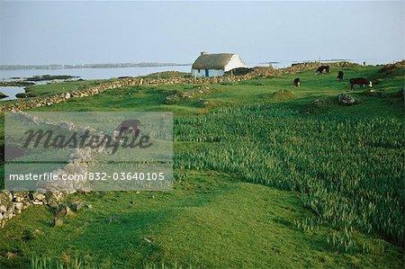 Roundstone, Connemara, co. Galway, Irlande ; Chalet près de l'Atlantique
