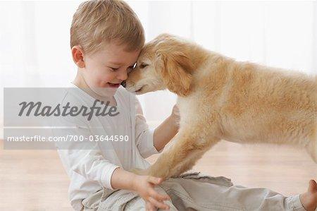 Kleiner Junge mit Goldendoodle Welpen