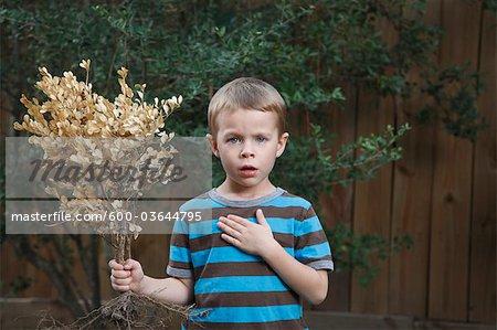 Portrait du petit garçon tenant une plante, Houston, Texas, USA