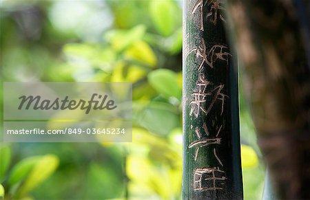 Caractères chinois sculptés en bambou. Bonne fortune