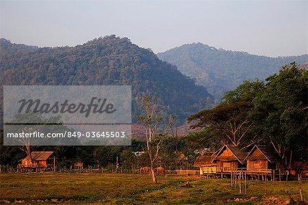 Thailand,Golden Triangle,Chiang Mai,Elephants