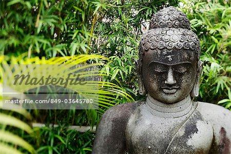 coup recadrée de Bouddha en pierre avec des arbres en arrière-plan