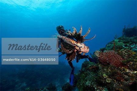 Plongeur et espèces envahissantes