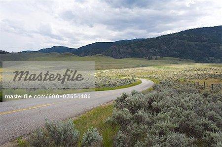 Route qui traverse le paysage près d'Oliver, vallée de l'Okanagan, en Colombie-Britannique, Canada