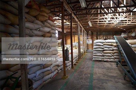 Säcke Kaffeebohnen im Warehouse, Costa Rica