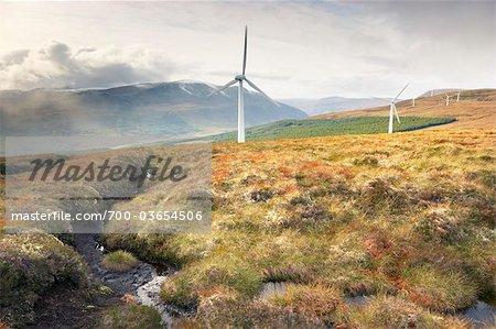 Windkraftanlagen in Bergen, Novar Windpark, Ross-Shire, Schottland