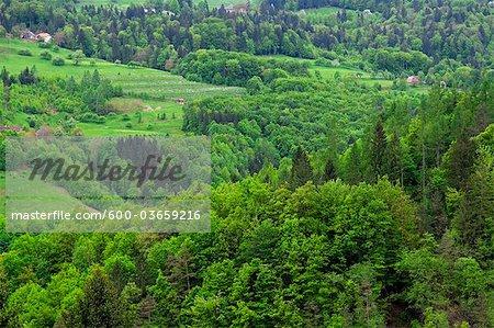 Vue aérienne du paysage, Slovénie