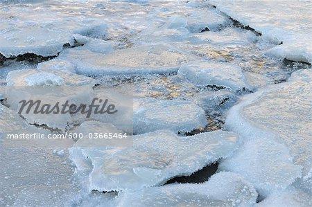Eis-Blatt, Lyngen Alpen, Breivikeidet, Troms, Norwegen