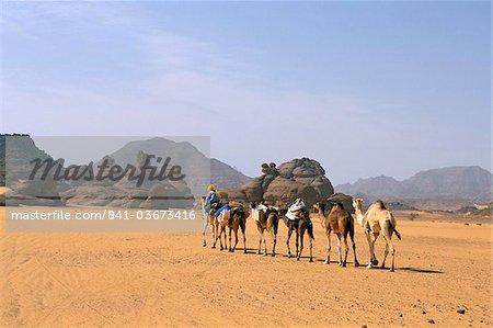 Désert du Sahara de caravane de chameau, Akakus, Fezzan (Libye), l'Afrique du Nord, Afrique