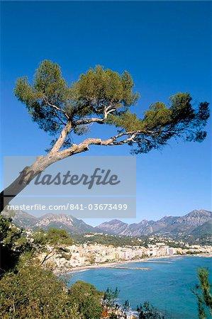 Menton, Alpes-Maritimes, Côte d'Azur, Provence, Côte d'Azur, France, Méditerranée, Europe