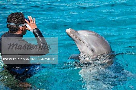 Dolphin Discovery at Chankanaab Park, Isla de Cozumel (Cozumel Island), Cozumel, off the Yucatan, Quintana Roo, Mexico, North America