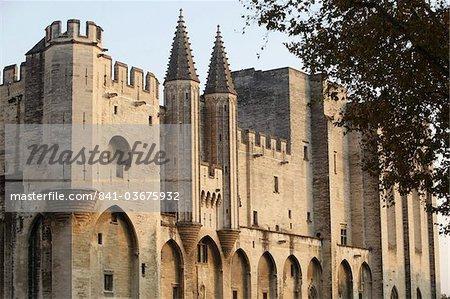 Palais des Papes, Avignon, UNESCO World Heritage Site, Vaucluse, France, Europe