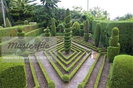 Topiaire en jardin à la française, jardin botanique, Funchal, Madeira, Portugal, Europe