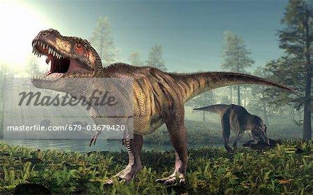 Tyrannosaurus rex dinosaur, artwork.