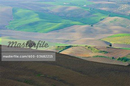 Aerial View of Rural Landscape near Ronda, Malaga Province, Andalusia, Spain