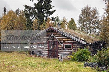 Cabane dans la forêt, Suède