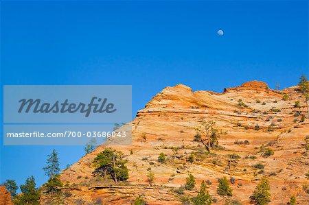 La lune au cours de la Formation rocheuse, Zion National Park, Utah, Etats-Unis