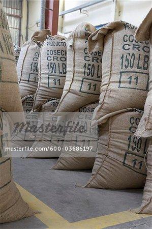 Kaffee verpackt in Jute Säcke, Cofeco S.A. trocken Mühle, Departamento Huehuetenango, Guatemala