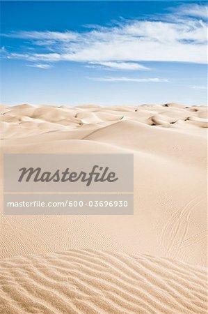 Imperial Sand Dunes Recreation Area, California, USA