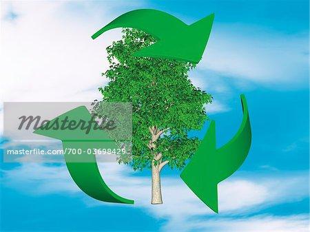 Recycling-Zeichen und Baum