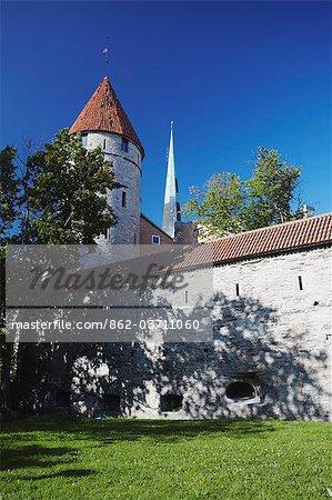 Estonie, Tallinn, tour sur le mur de la ville avec l'Eglise Oleviste en arrière-plan