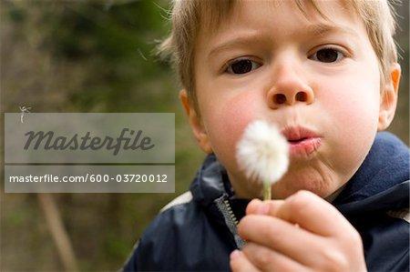 Boy Blowing on Dandelion, Salzburg, Salzburger Land, Austria