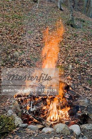 Campfire, Salzburg, Salzburger Land, Austria