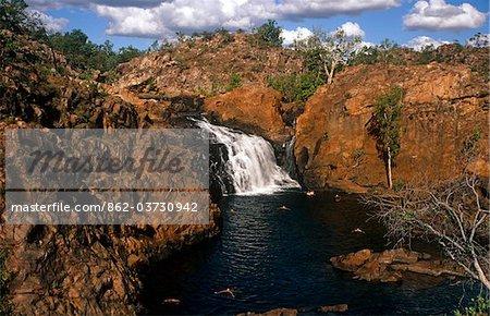 Australie, Northern Territory, nr de Jatbula Trail, Parc National de Nitmiluk Katherine. Nageurs profiter d'une piscine de roche à Edith Falls.