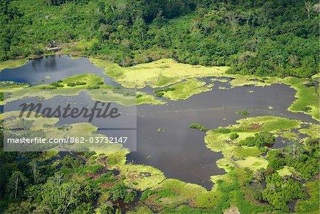 Vue aérienne de la forêt tropicale près de Iquitos, Pérou