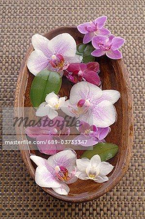 Orchidées en fleurs dans un bol en bois avec de l'eau