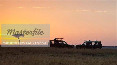 Silhouette of jeeps and tree on plain, Masai Mara National Reserve, Kenya